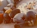 1979약수동도장현판식3